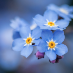 Heating your property efficiently during spring